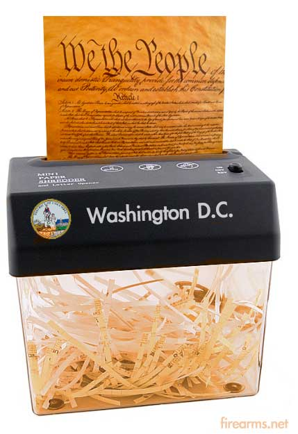 DC-Shreds-Constitution